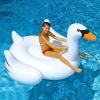 แพยางเป่าลม แพยางหงส์ สีขาว swan pool float แพยางเป่าลมหงส์ขาว