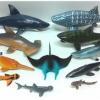 ชุดโมเดลสัตว์น้ำ ชุดปลาฉลามรวม Set 11 ตัว