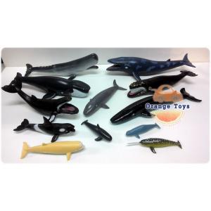 ชุดปลาวาฬรวม 12 ตัว