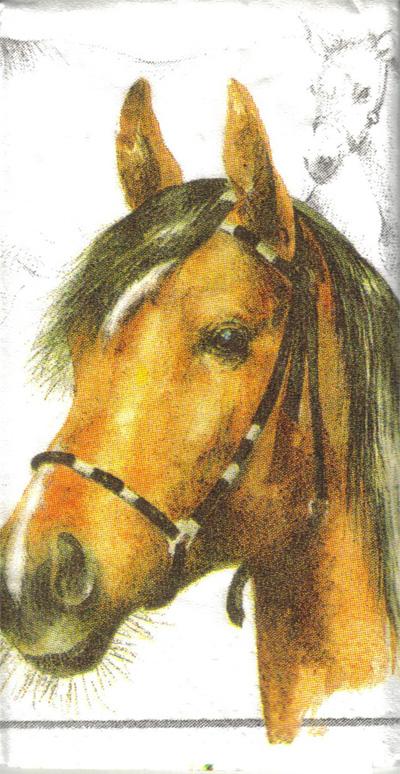 แนวภาพสัตว์ ภาพวาดม้า บนพื้นขาว ภาพแนวยาว กระดาษแนพคินสำหรับทำงาน เดคูพาจ Decoupage Paper Napkins ขนาด 21X22cm