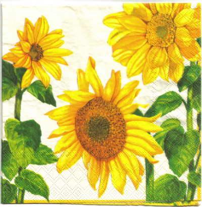 แนวภาพดอกไม้ เป็นแนวดอกทานตะวัน เป็นภาพครึ่งแผ่น กระดาษแนพกิ้นสำหรับทำงาน เดคูพาจ Decoupage Paper Napkins ขนาด 33X33cm