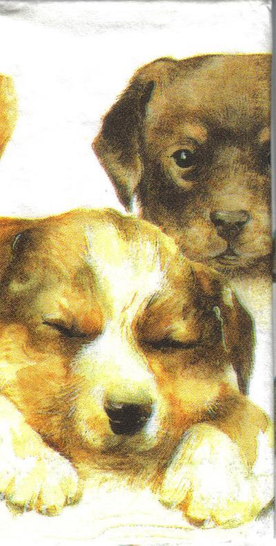 แนวภาพสัตว์ ภาพวาดน้องหมา ภาพไม่ซ้ำทั้งแผ่ง ภาพลายกระจายเต็มแผ่น กระดาษแนพคินสำหรับทำงาน เดคูพาจ Decoupage Paper Napkins ขนาด 21X22cm