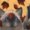 แนวภาพสัตว์ น้องแมวน้อยสีสวาท เล่นกับใบไม้ บนพื้นครีม ภาพโทนสีครีม เป็นภาพ 4 บล๊อค กระดาษแนพกิ้นสำหรับทำงาน เดคูพาจ Decoupage Paper Napkins ขนาด 33X33cm