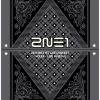 2NE1 : 2011 1st Live Concert DVD - NOLZA!