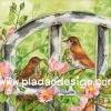 กระดาษสาพิมพ์ลาย สำหรับทำงาน เดคูพาจ Decoupage แนวภาำพ นกน้อยสีน้ำตาล 2 ตัว มานั่งจู๋จี๋กันอยู่ในสวนดอกไม้สีชมพู สีคลาสสิคสวยหวาน (ปลาดาวดีไซน์)