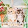 กระดาษสาพิมพ์ลาย สำหรับทำงาน เดคูพาจ Decoupage แนวภาำพ ลูกแมวน้อยๆ ขนปุย 2 ตัว 2 สี นั่งบนขอบหน้าต่าง น่ารักมว๊ากกก
