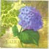 แนวภาพดอกไม้ เป็นช่อดอกไฮเดนเยียสีฟ้า บนพื้นแนววินเทจ เป็นภาพ 4 บล๊อค กระดาษแนพกิ้นสำหรับทำงาน เดคูพาจ Decoupage Paper Napkins ขนาด 33X33cm