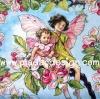 กระดาษสาพิมพ์ลาย สำหรับทำงาน เดคูพาจ Decoupage แนวภาำพ ภาพวาด Fairy Story นางฟ้ามีปีกพี่สาว โอบประคองนางฟ้าน้องสาวตัวน้อยชมวิวทิวทัศน์อยุ่บนกิ่งไม้ (ปลาดาวดีไซน์)