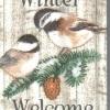 แนวภาพสัตว์ นกใน Winter กับคำ Welcome เป็นภาพ 8 บล๊อคในแผ่น กระดาษแนพคินสำหรับทำงาน เดคูพาจ Decoupage Paper Napkins ขนาด 21X22cm