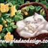 กระดาษสาพิมพ์ลาย สำหรับทำงาน เดคูพาจ Decoupage แนวภาำพ ลูกแมวขนขาว 3 ตัว นอนหลับพับอยุ่ในตระกร้าหวายในซุ้มกุหลาบเหลือง