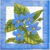 แนวภาพดอกไม้ ดอกไม้สีฟ้าแซมใบเขียวในกรอบสีฟ้า ภาพโทนสีฟ้า เป็นภาพ 4 บล๊อค กระดาษแนพกิ้นสำหรับทำงาน เดคูพาจ Decoupage Paper Napkins ขนาด 33X33cm กระดาษรุ่นพิเศษ