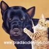กระดาษสาพิมพ์ลาย สำหรับทำงาน เดคูพาจ Decoupage แนวภาพ พี่หมาดำ ตัวโตตาเล็ก น้องแมวลายเสือตัวเล็ก ตาโต