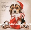กระดาษสาพิมพ์ลาย สำหรับทำงาน เดคูพาจ Decoupage แนวภาำพ ภาพวาด ลูกแมวน้อยHush Puppy ในชุดซานตาคลอส ฉลองคริสต์มาส Christmas มีคำคมวลีเด็ด (ปลาดาวดีไซน์)