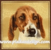 กระดาษสาพิมพ์ลาย สำหรับทำงาน เดคูพาจ Decoupage แนวภาพ สุนัข น้องหมาใบหน้าน้ำตาลปากขาว บนพื้นสีครีม