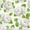 แนวภาพดอกไม้ ดอกกุหลาบสีขาวบนพื้นขาว เป็นภาพลายกระจายเต็มแผ่น กระดาษแนพกิ้นสำหรับทำงาน เดคูพาจ Decoupage Paper Napkins ขนาด 33X33cm