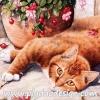 กระดาษสาพิมพ์ลาย สำหรับทำงาน เดคูพาจ Decoupage แนวภาำพ น้องแมวสีทอง นอนแหงะหน้ามามองกล้อง