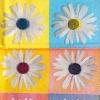 แนวภาพดอกไม้ ดอกไม้สีขาวบนพื้นลายกรอบหลากสี ภาพลายกระจายเต็มแผ่น กระดาษแนพคินสำหรับทำงาน เดคูพาจ Decoupage Paper Napkins ขนาด 21X22cm