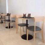 โต๊ะขาแชมเปญ+เก้าอี้ 2 ตัว สำหรับแต่งร้านกาแฟ ร้านเบเกอรี่ (M-SET)