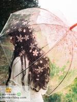 ร่มกันแสงแดดUV ร่มกันฝน ร่มลูกไม้เจ้าสาว ร่มแบบแปลกๆ ดีไซน์ทันสมัยค่ะ