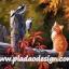กระดาษสาพิมพ์ลาย สำหรับทำงาน เดคูพาจ Decoupage แนวภาำพ น้องแมวน้อยแสนซน นั่งบนรั้วขอนไม้ มองนก2 ตัวว่าทำไมมีหัวเป็นสีส้ม thumbnail 1
