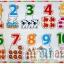 จิ๊กซอว์ไม้ตัวเลขจับคู่สัตว์ 1-10 thumbnail 1
