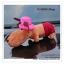GL116 ตุ๊กตาน้องหมา ช่วยดูดกลิ่นอับในรถยนต์ มี 3 แบบ ขนาด ลำตัวยาว 25 x หนา 11 cm. thumbnail 9