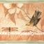 กระดาษสาพิมพ์ลาย สำหรับทำงาน เดคูพาจ Decoupage แนวภาำพ ภาพวาดสีหวาน นกน้อยเกาะกิ่งดอกไม้ คุยกะเพื่อนแมงปอ พื้นโทนส้ม (ปลาดาวดีไซน์) thumbnail 1
