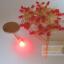 LED ขนาด 3 มิล ชนิดตัวสี ถุงละ 1000 ตัว thumbnail 6