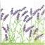 แนวภาพดอกไม้ เป็นช่อดอกไม้สีม่วงบนพื้นขาว เป็นภาพครึ่งแผ่น กระดาษแนพกิ้นสำหรับทำงาน เดคูพาจ Decoupage Paper Napkins ขนาด 33X33cm thumbnail 1