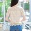 เสื้อเกาหลีลูกไม้อิตาลี่ แขนยาว พร้อมส่ง thumbnail 20